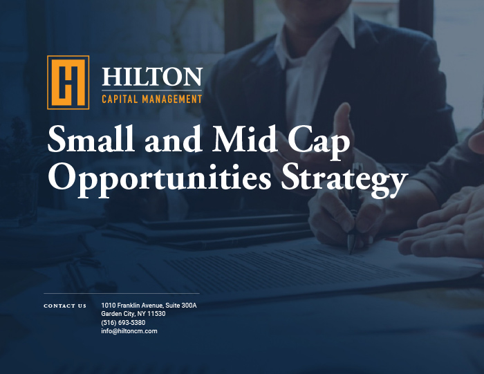 Small and Mid Cap Opportunities Strategy
